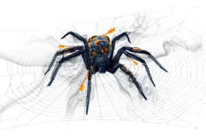 Managed Network Spider